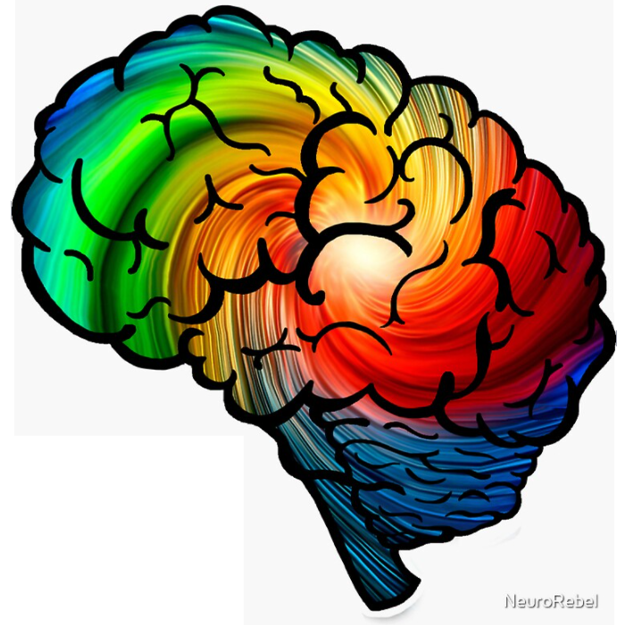 Brain-shaped sticker with bold swirling rainbow colors and black lines